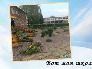 Вот моя школа