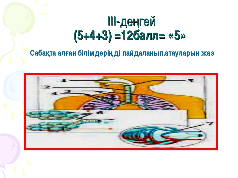III-деңгей (5+4+3) =12балл= «5» Сабақта алған білімдеріңді пайдаланып,атаулар...
