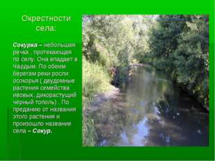 Окрестности села: Сокурка – небольшая речка , протекающая по селу. Она впадае