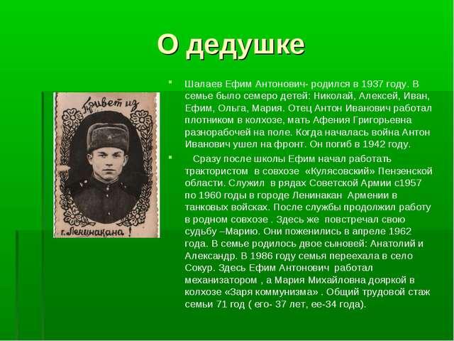 О дедушке Шалаев Ефим Антонович- родился в 1937 году. В семье было семеро дет...