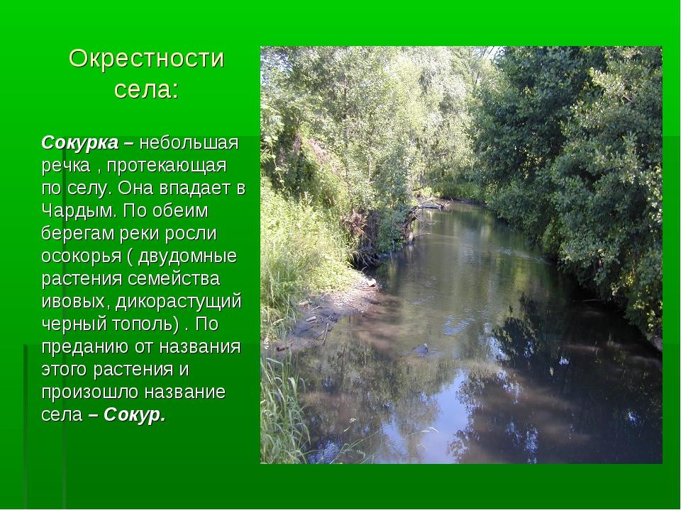 Окрестности села: Сокурка – небольшая речка , протекающая по селу. Она впадае...
