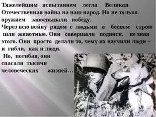 Тяжелейшим испытанием легла Великая Отечественная война на наш народ. Но не т