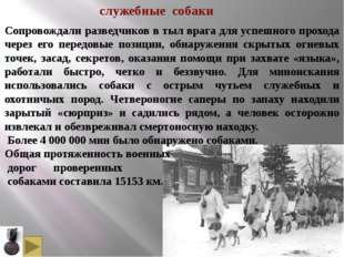 В 1933 г. слушателем курсов военного собаководства Шошиным было внесено предл