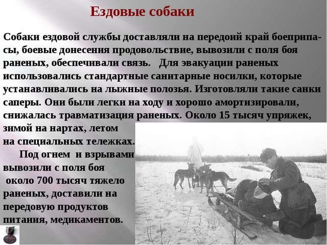 . В сражениях в Крыму и на Северном Кавказе самые тяжёлые грузы таскали вынос...