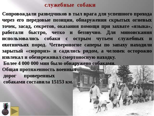 В 1933 г. слушателем курсов военного собаководства Шошиным было внесено предл...