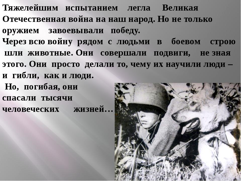 Тяжелейшим испытанием легла Великая Отечественная война на наш народ. Но не т...