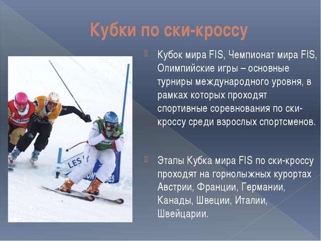 Кубки по ски-кроссу Кубок мира FIS, Чемпионат мира FIS, Олимпийские игры – ос...