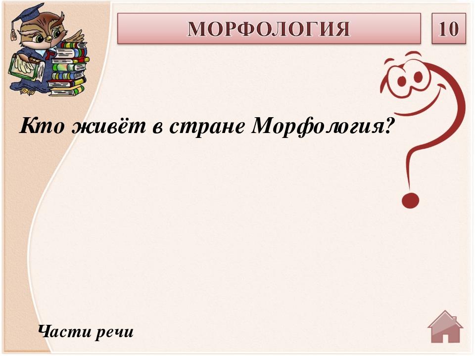 Части речи Кто живёт в стране Морфология?