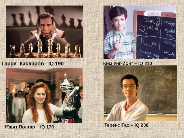 Гарри Каспаров - IQ 190 Ким Унг-Йонг – IQ 210 Юдит Полгар – IQ 170 Теренс Тао...