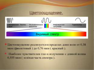 Цветоощущение. Цветоощущение реализуется в пределах длин волн от 0,38 мкм (ф