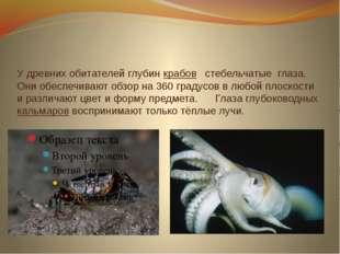 У древних обитателей глубин крабов стебельчатые глаза. Они обеспечивают обзор