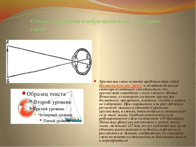 Схема получения изображения на сетчатке глаза Хрусталик глаза человека предст...