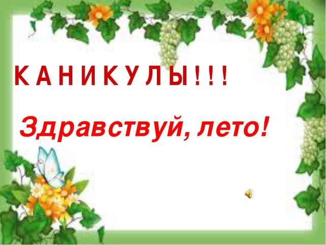 К А Н И К У Л Ы ! ! ! Здравствуй, лето!