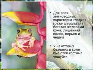 Для всех земноводных характерна гладкая (реже шершавая) богатая железами кожа