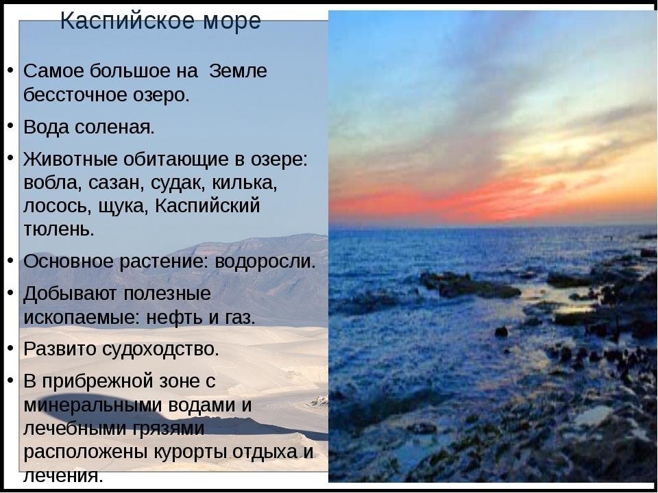 Каспийское море Самое большое на Земле бессточное озеро. Вода соленая. Животн...