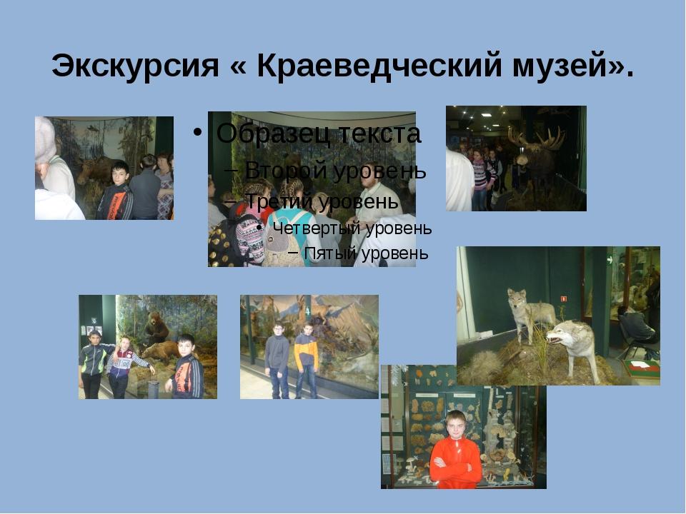 Экскурсия « Краеведческий музей».