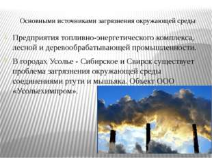 Основными источниками загрязнения окружающей среды Предприятия топливно-энерг