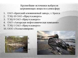 Крупнейшие источники выбросов загрязняющих веществ в атмосферу ОАО «Братский