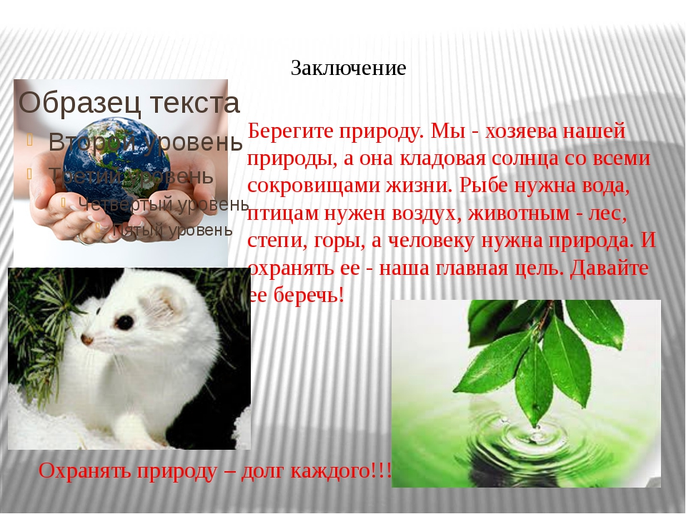 Заключение Охранять природу – долг каждого!!! Берегите природу. Мы - хозяева...