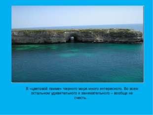 В «цветовой гамме» Черного моря много интересного. Во всем остальном удивител