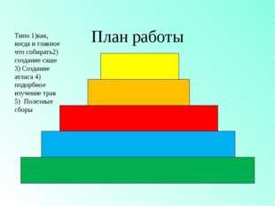 План работы Типо 1)как, когда и главное что собирать2) создание саше 3) Созда