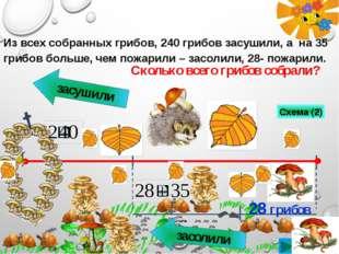 засушили засолили 28 грибов Сколько всего грибов собрали? Из всех собранных