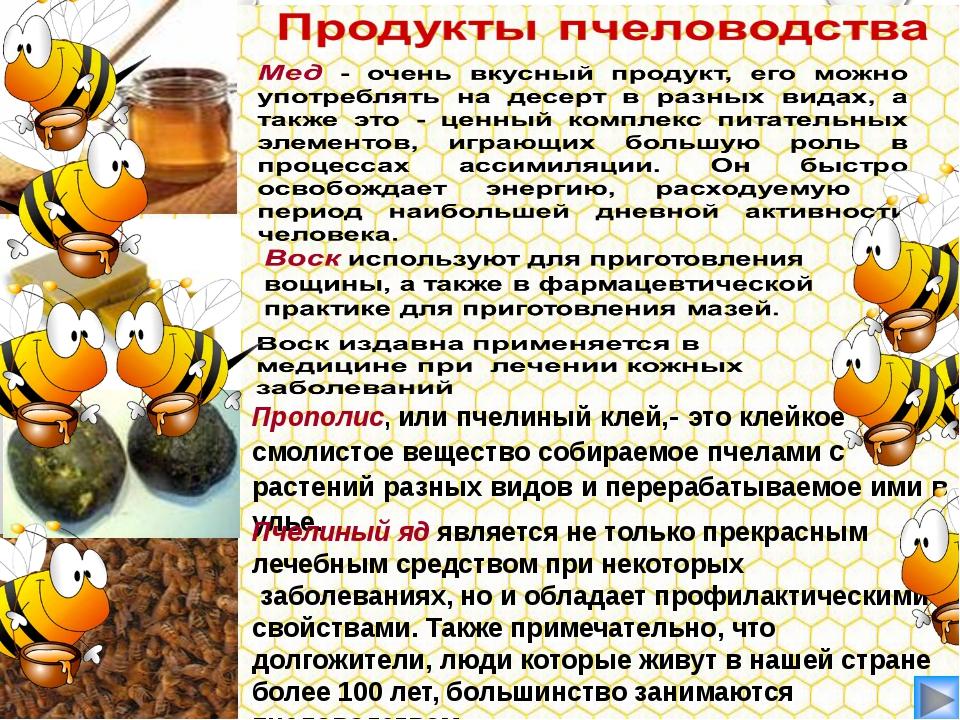Прополис, или пчелиный клей,- это клейкое смолистое вещество собираемое пчела...