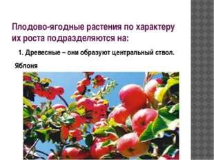 Плодово-ягодные растения по характеру их роста подразделяются на: 1. Древесны