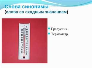 Слова синонимы (слова со сходным значением) Градусник Термометр