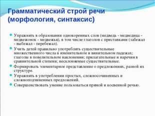 Грамматический строй речи (морфология, синтаксис) Упражнять в образовании одн