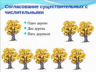 Согласование существительных с числительными Одно дерево Два дерева Пять дере