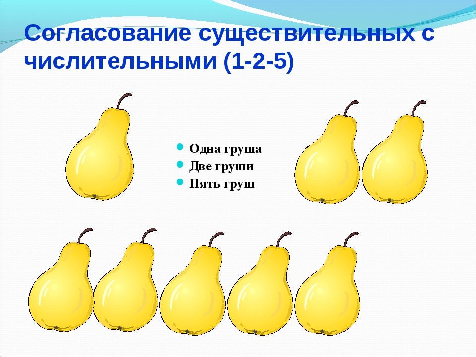 Согласование существительных с числительными (1-2-5) Одна груша Две груши Пят...