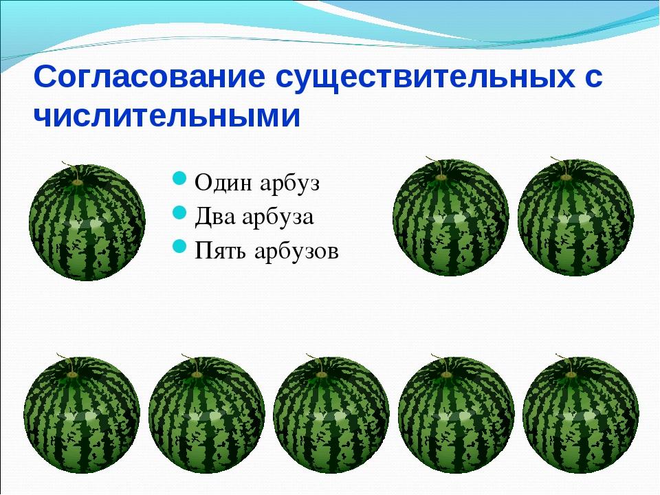 Согласование существительных с числительными Один арбуз Два арбуза Пять арбузов