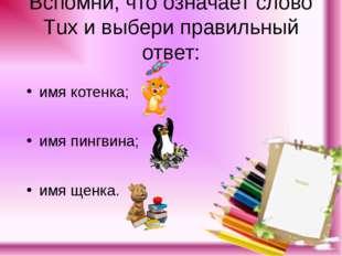 Вспомни, что означает слово Тuх и выбери правильный ответ: имя котенка; имя п