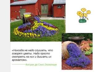 «Никогда не надо слушать, что говорят цветы. Надо просто смотреть на них и ды