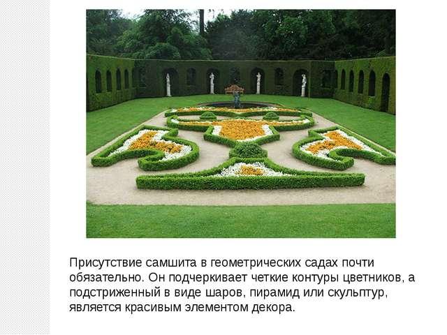 Присутствие самшита в геометрических садах почти обязательно. Он подчеркивает...