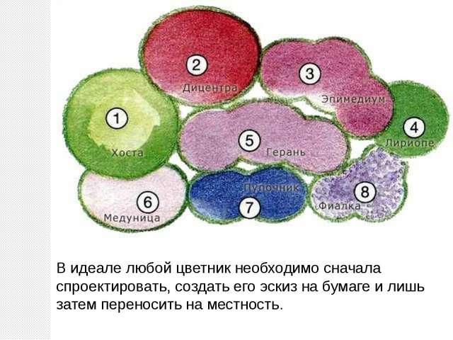 Видеале любой цветник необходимо сначала спроектировать, создать его эскиз н...