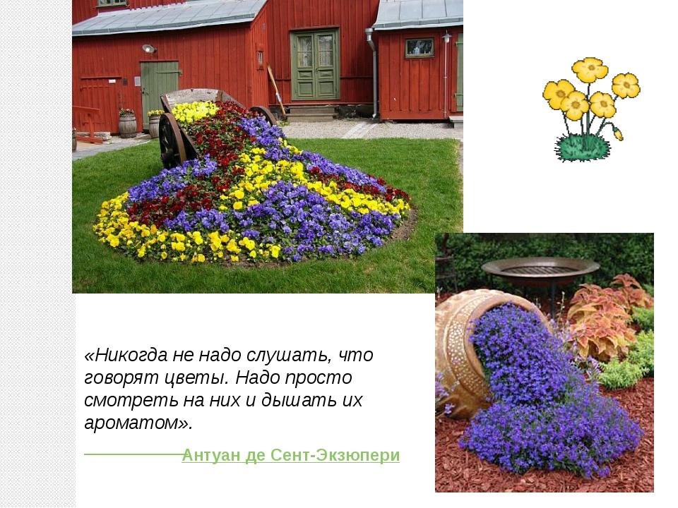 «Никогда не надо слушать, что говорят цветы. Надо просто смотреть на них и ды...