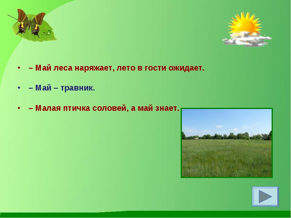 –Май леса наряжает, лето в гости ожидает. –Май – травник. –Малая птичка с...