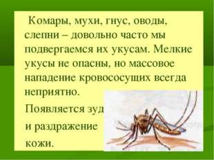 Комары, мухи, гнус, оводы, слепни – довольно часто мы подвергаемся их укусам