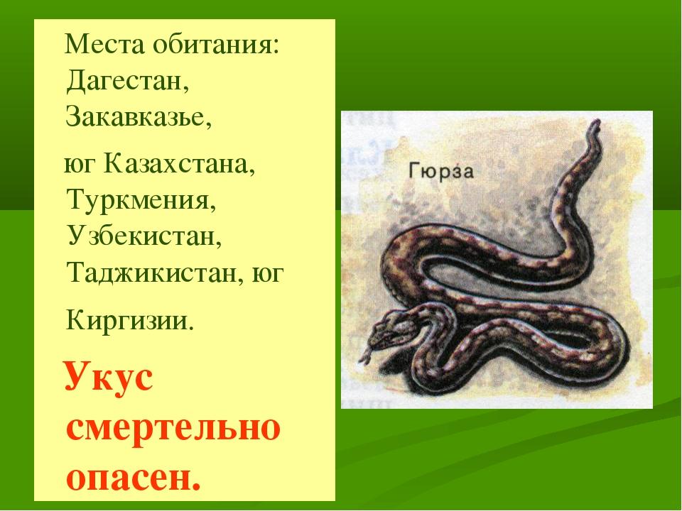 Места обитания: Дагестан, Закавказье, юг Казахстана, Туркмения, Узбекистан,...