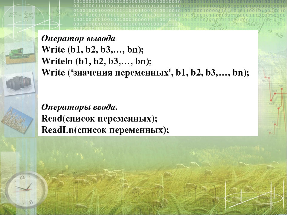 Оператор вывода Write (b1, b2, b3,…, bn); Writeln (b1, b2, b3,…, bn); Write...