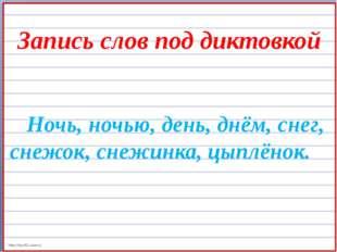 Запись слов под диктовкой Ночь, ночью, день, днём, снег, снежок, снежинка, ц