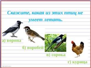 Скажите, какая из этих птиц не умеет летать. а) ворона б) воробей в) сорока