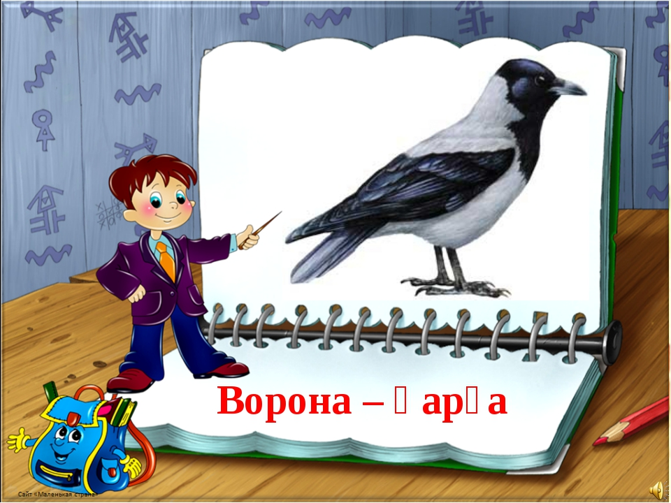 Ворона – қарға