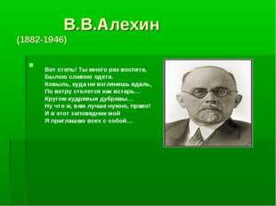 В.В.Алехин (1882-1946) Вот степь! Ты много раз воспета, Былою славою одета.