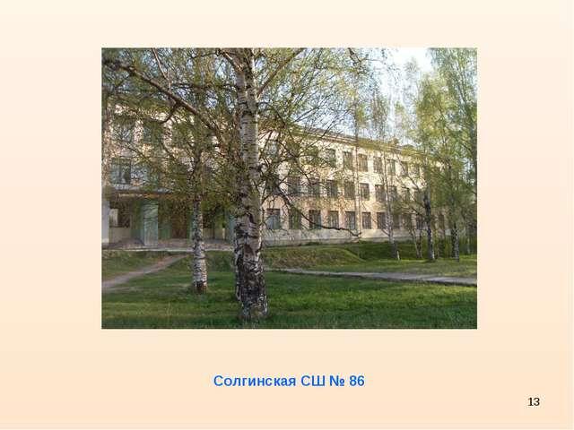* Солгинская СШ № 86