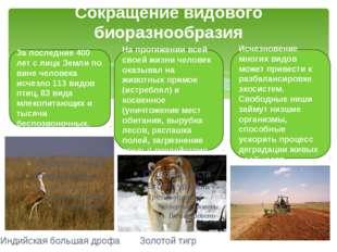Сокращение видового биоразнообразия За последние 400 лет с лица Земли по вине