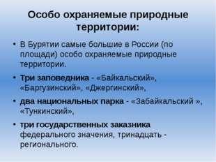 Особо охраняемые природные территории: В Бурятии самые большие в России (по п