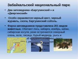 Забайкальский национальный парк: Два заповедника «Баргузинский » и «Джергинс